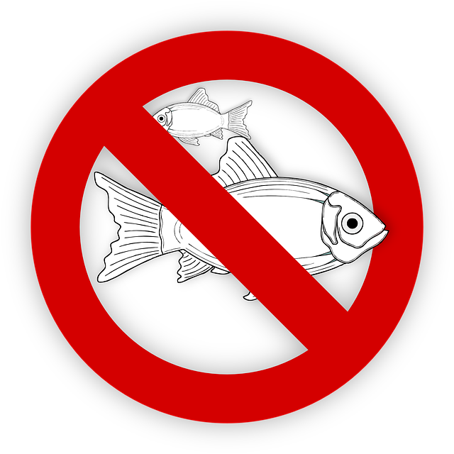 fish-995050_640
